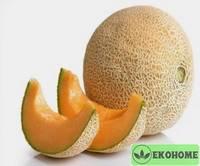 Papayadew melon f1 - папайевая дыня f1