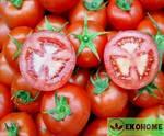 "Томат патио ""красная молния""f1 - tomato patio ""red lightning""f1"