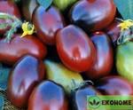"""Томат """"черный корсар""""f1 - tomato """"negro bucanero""""f1"""